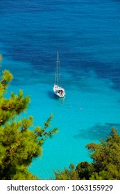 White sailboat, blue sea, bay and swimmers, green pine trees - idyllic summer holiday - excursion; background, copy space.