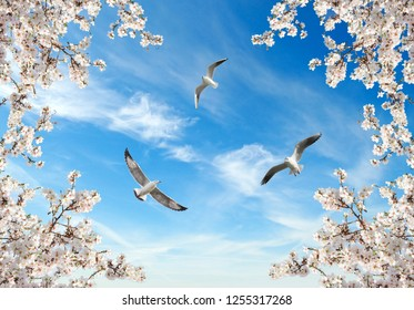 white sakura trees and seagulls in sky background