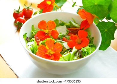 White salad bowl with orange nasturtium flowers, green lettuce leaves, tomatoes and parmesan shavings on a table with a white cloth, nasturtium plant in the background,
