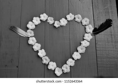 White Sampaguita Jasmine flowersare heart - shaped arrangement ,on blue wooden background, black and white.