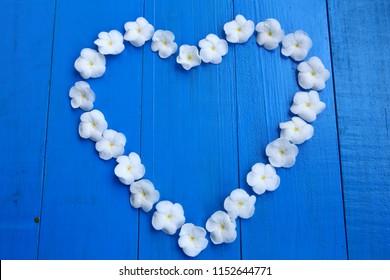 White Sampaguita Jasmine flowersare heart - shaped arrangement on blue wooden background.