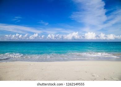 White sand beach on Bimini island in the Bahamas.
