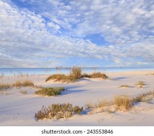 White Sand Beach, Sea Oats and Beautiful Cloudy Sky