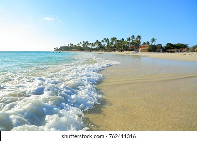 White sand beach and turquoise waves on green palm trees and blue sky background. Aruba.  Beautiful backgrounds.