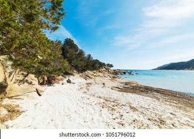 White sand in Cala Pira shore. Sardinia, Italy