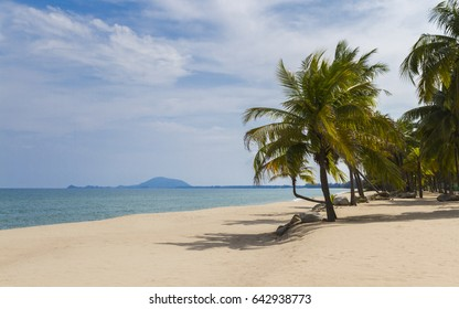 White Sand And Coconut Trees On The White Beach.
