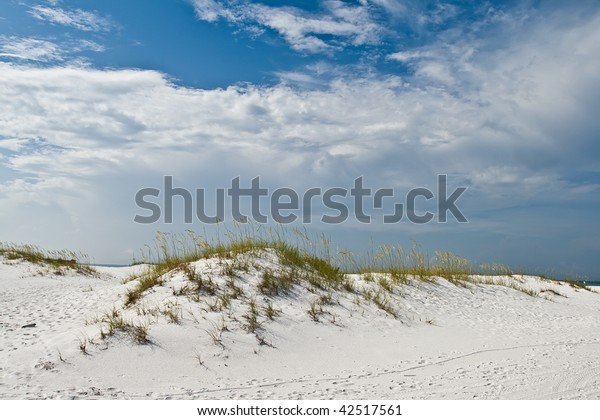 White sand dune in a Florida