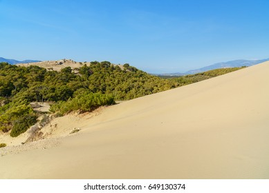 White Sand dunes on Patara beach. Antalya Province. Turkey