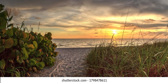 White sand path leading toward Delnor Wiggins State Park at sunset in Naples, Florida.