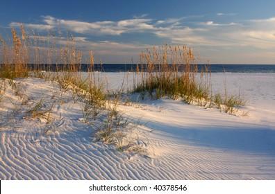 White Sand, Sea Oats and Blue Sky