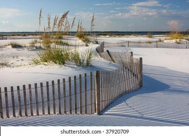 White Sand, Sea Oats and Fence on Florida Beach