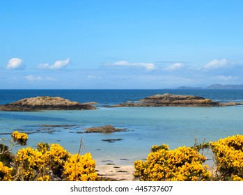The White Sands of Morar - Turquoise Water and Yellow Flowers