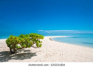 White sandy beach with blue sky in Bora Bora