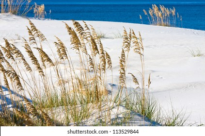 The white sandy beach on the Alabama gulf coast.
