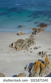 White sandy beach with outcrops of lichen covered rocks on Carcass Island in the Falkland Islands.