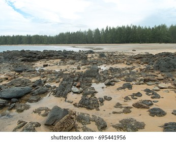 White sandy beach with rocks and the pine forest in Koh Phra Thong, Thailand