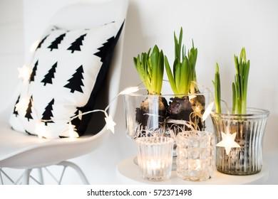 White scandinavian spring interior, hyacinths in a jar closeup, minimalist room decor with daylight
