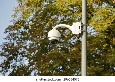 White security camera. Surveillance dome cctv camera in streets. Tree on background.
