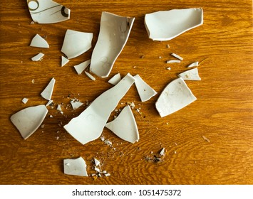 White Shards of a Broken Plate on the Floor