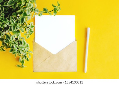 A white sheet in a letter envelope. Envelope of Kraft paper with a white sheet for writing. The envelope is on a yellow background. White pen for writing. Green plant on the left side of the frame.