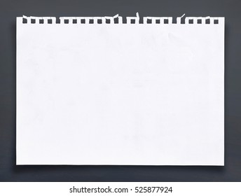 White sheet of paper background.