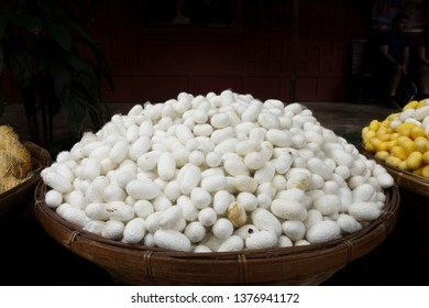 White silk cocoons in a basket, used to make silk.