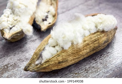 White silk cotton