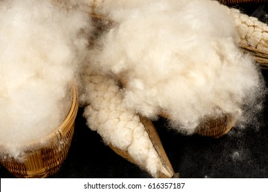 White silk cotton tree , Ceiba, Kapok, Java cotton, Java kapok, Silk-cotton.