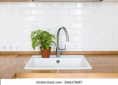 White sink, white ceramic brick tile wall, plants in the kitchen