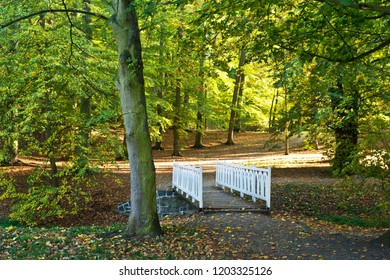 White small bridge in the park in the autumn