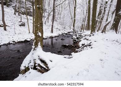 White snow by the river. Moravian landscape Pilske udoli.