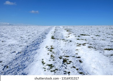 white snow covered flat land, above is a blue sky, popping up through the white snow are tuffs of green grass, the indent of a track runs up the middle of the image, Mount Caburn, Lewes, Sussex, UK,