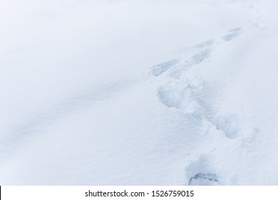 White snow with traces of man. Top view of human footprints on white snow. Footprints fresh snow. Footprints in the white snow, snowdrift.