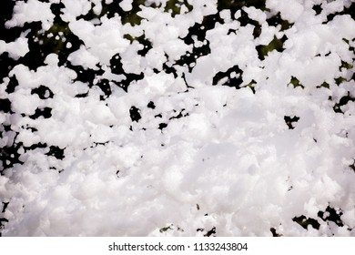 White soap foam on a black background. Foam party entertainment, background or texture of a white foam with copy space