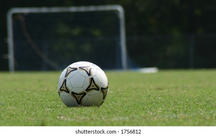 White soccer ball on green field