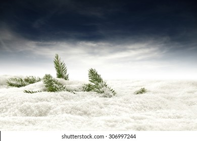white space of snow decoration and xmas tree place of green color