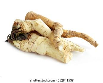 white spicy root of horseradish