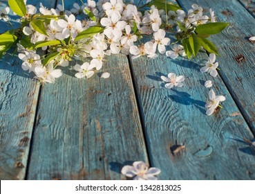 white spring flowers on old blue wooden background