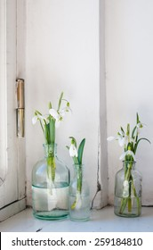 White spring flowers snowdrops in vintage glass bottles on an old wall background, interior decoration