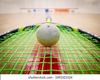 White squash ball on the strings of a racket in the middle of a indoor squash court