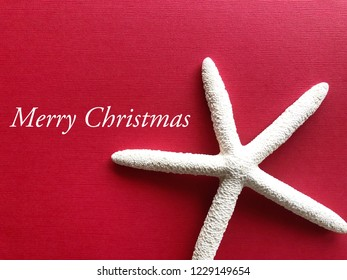 "White starfish against a cheery red background. Christmas concept. ""Merry Christmas """