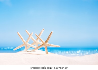 white starfish with ocean, on white sand beach, sky and seascape, shallow dof