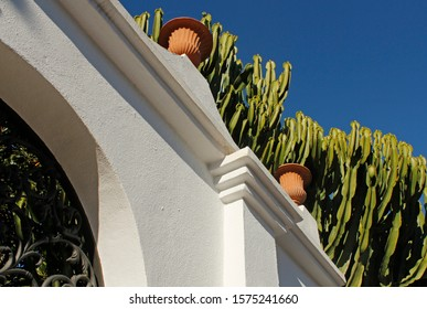 White stone fence, wrought iron gates and green cactus against the blue sky