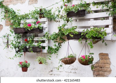 White storage industrial pallet used in gardening for a wall decoration as a shelf for flowerpots and other objects. Useful and interesting ideas what to do with pallets in garden,house or backyard.