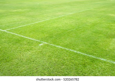 White stripe on the green football (soccer) field