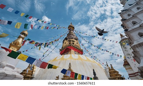 White Stupa of Swayambhunath Temple in Kathmandu Nepal. The stupa is decorated with colourful buddhist flags against the blue sky with a pigeon flying past.