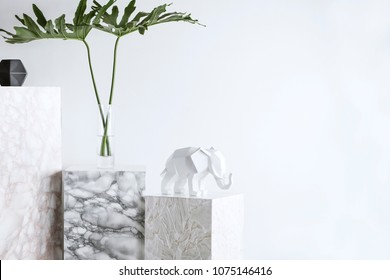 The white stylish interior with copy space, tropical leafs, white elephant figure and marble  blocks.