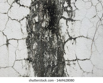 white surface with a black web of cracks and a wide black stripe in the middle
