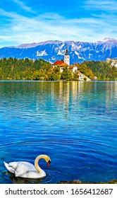 White swan in mountain lake. Swan mountain lake castle. White swan in lake water. Swan in lake
