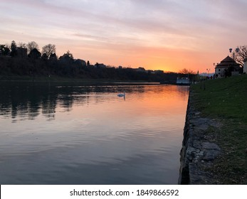 White swan swimming towards the beautiful orange sunset on a broad river with a stonewall and grass on the riverside